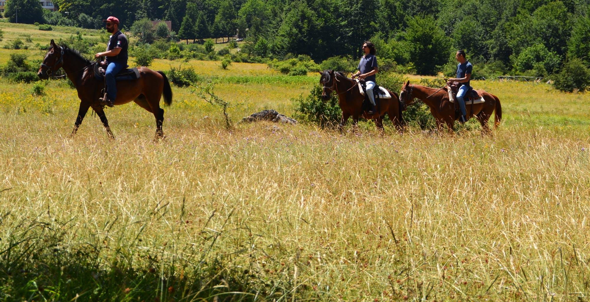 trekking a cavallo prati di tivo